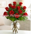 One Dozen Premium  Red Roses in a vase