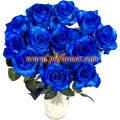 Blue Rose In  a Vase