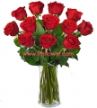 1 Dozen Long Stem Red Roses - VASE INCLUDED